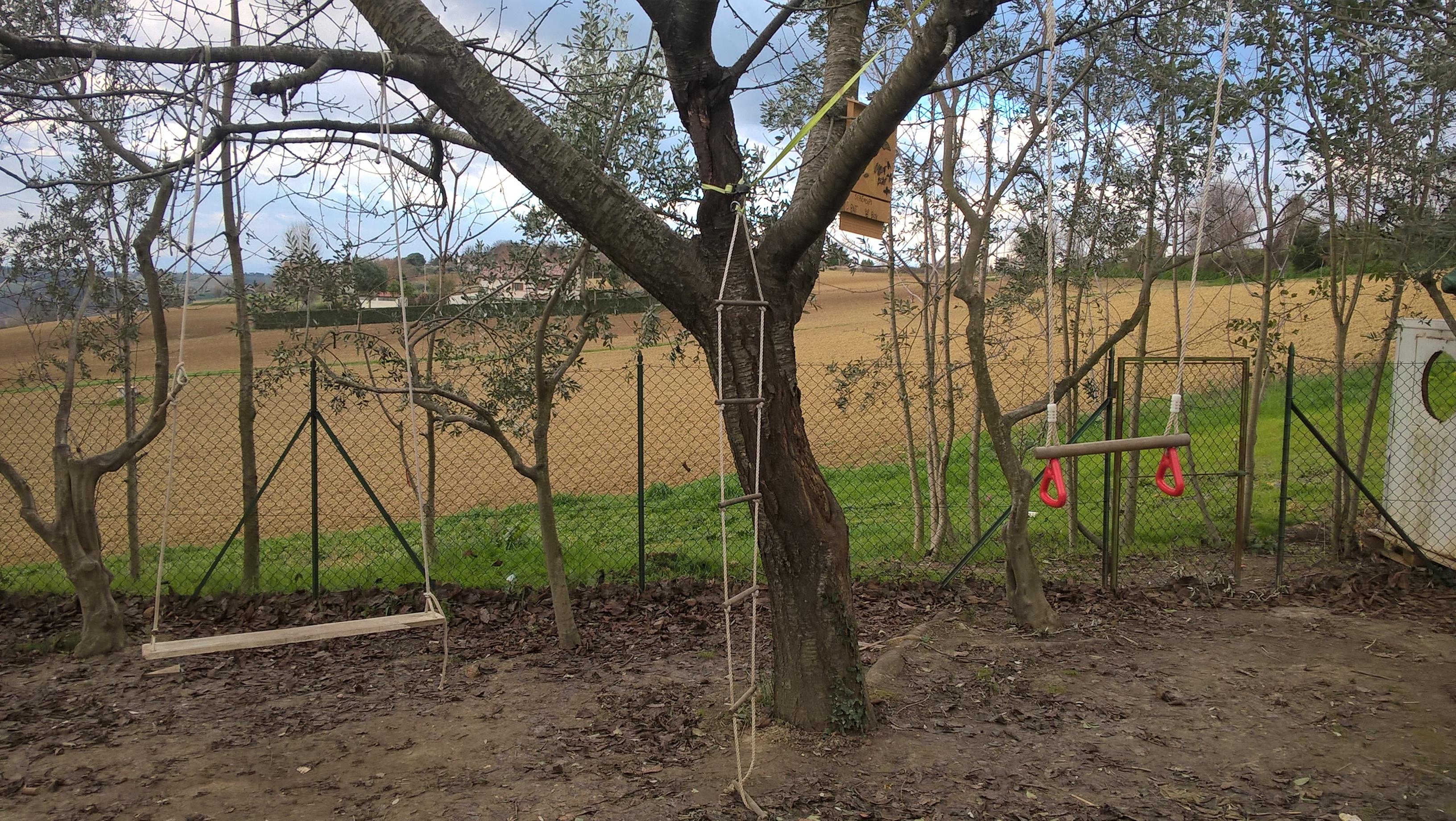 Giochi sull'albero in giardino