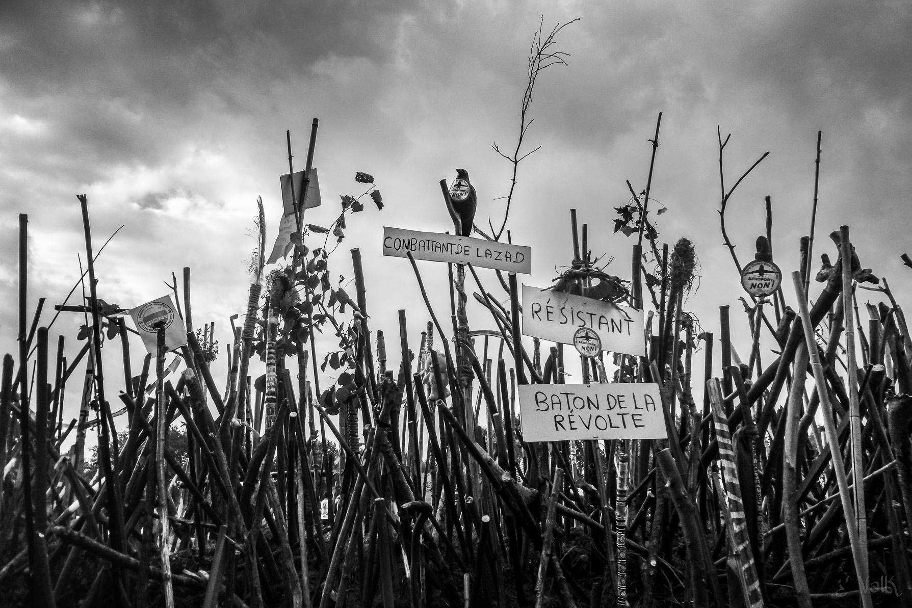I bastoni della rivolta, 2016. Foto di Valk