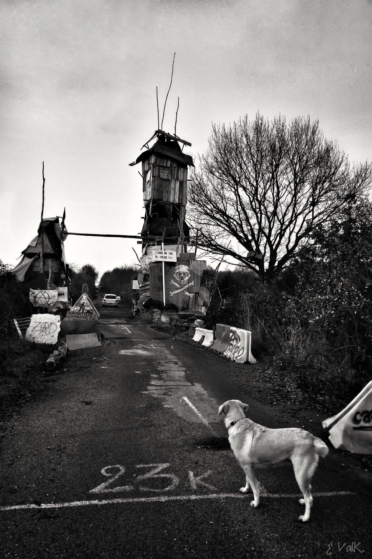 La torre-barricata Bison Futé, 2016. Foto di Valk